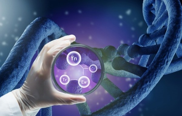 בדיקות סקר גנטיות